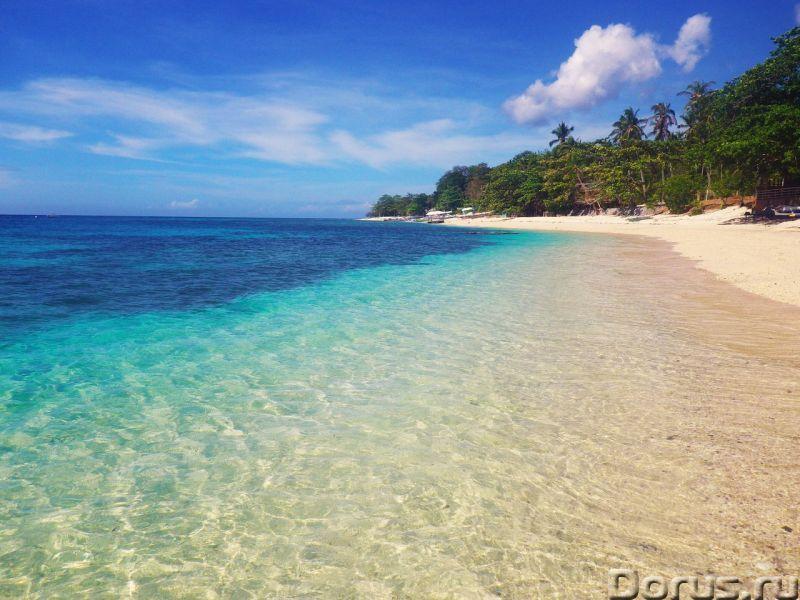 Филиппины, отдых душой и телом, сыроедение, вегетарианство, фрукторианство - Прочее по отдыху и спор..., фото 4