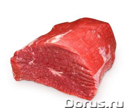 Мясо свинина говядина - Мясные продукты - Продам мясо свинины и говядины! Экологически чистое! С лич..., фото 3