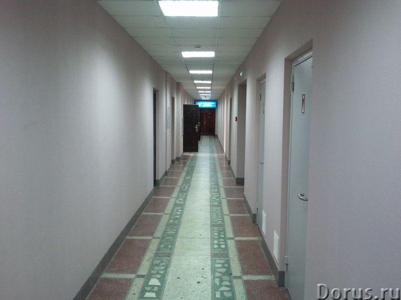 Сдам офис - Офисы - Офисы от 20 м. кв. от собственника! 500 рублей за метр. Коммунальные платежи вкл..., фото 2