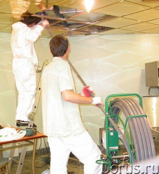Очистка системы вентиляции, прочистка дымоходов, дезинфекция воздуховодов - Уборка и дератизация - П..., фото 3